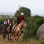 Festival Internationnal d'endurance équestre de Bretagne