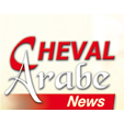 Cheval Arabe News