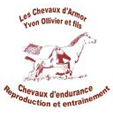 Cheval d'Armor
